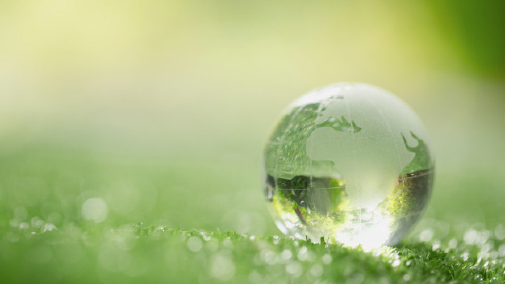 close-up-of-crystal-globe-resting-on-grass-in-a-forest_1150-12730