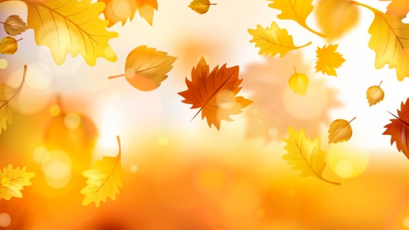 realistic-autumn-leaves-background_52683-43835